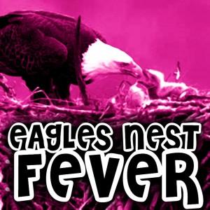 Eagles Nest Fever